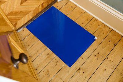 Norden Dust Covers Sticky Door Entry Floor Mats - Blue